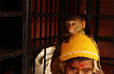 Sadhu con scimmia