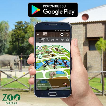 App zoo di Napoli