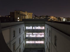 Eggs & Skulls-Madre 2017 di Franz Cerami