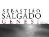 'Genesi' di Sebastião Salgado, mostra al PAN