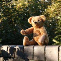 'Vi presento Christopher Robin' Winnie the Pooh