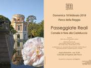 Passeggiate Reali: 'Camelie in fiore alla Castelluccia'