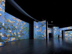 'Van Gogh Alive - The Experience'