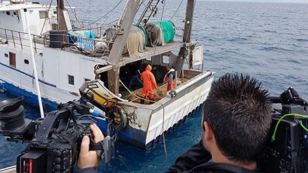 pesca plastica