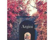 'Argini', di Antonio Petrone