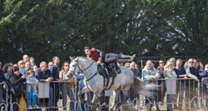 Spettacolo equestre, foto Andrea Mandruzzato