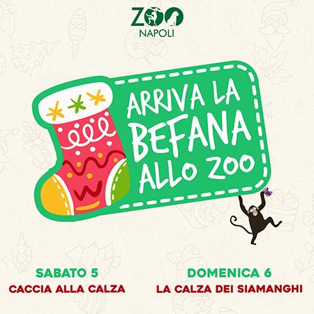 Befana allo Zoo di Napoli