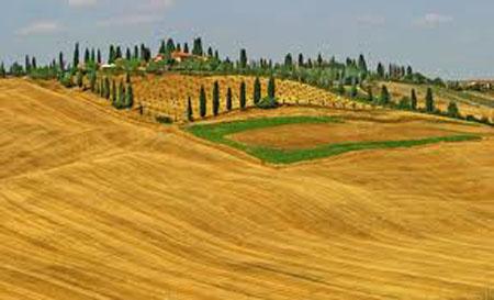 Paesaggio senese
