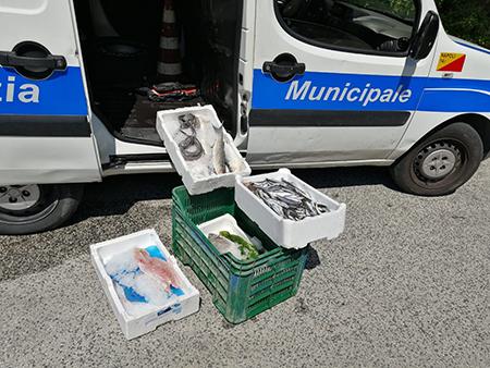 Sequestro prodotti ittici via Ferrara Napoli