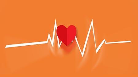 Otto Consigli Per La Salute Del Tuo Apparato Cardiocircolatorio Expartibus