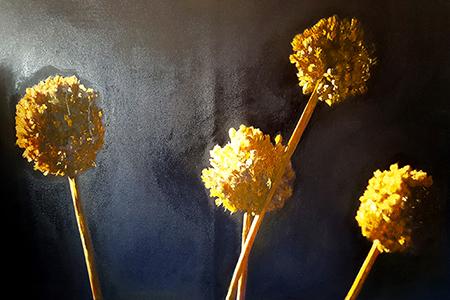 Vincenzo Lo Sasso, Fiori dell'Aglio, 2019, olio su tela, 70x100 cm