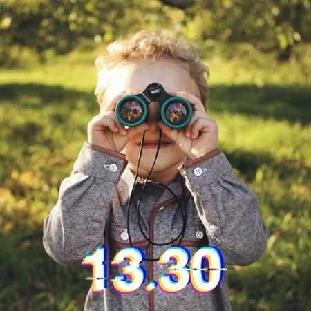 '13.30' Hawkesi