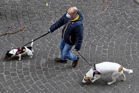 passeggiata con i cani