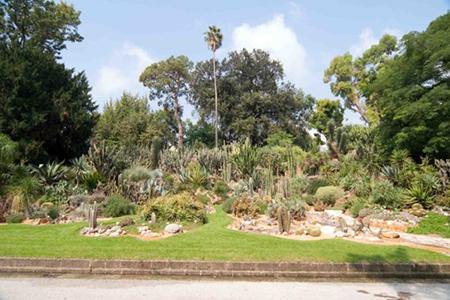 Real Orto Botanico Napoli