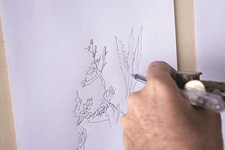 'Drawing machine #8'