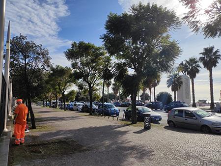 Napoli, manutenzione del verde orizzontale
