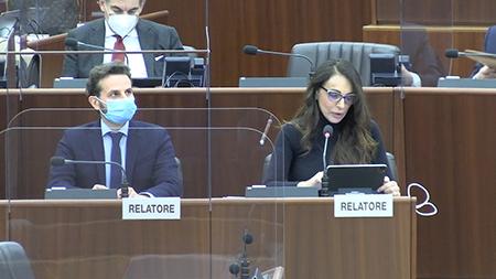 Marco Degli Angeli e Barbara Mazzali relazione del Comitato paritetico