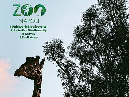 Zoo di Napoli Uniti per la biodiversità