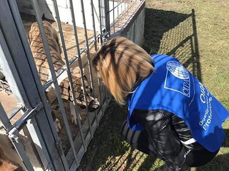 Guardia Zoofila OIPA con cane