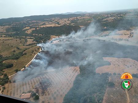 Incendio a Scansano (GR)
